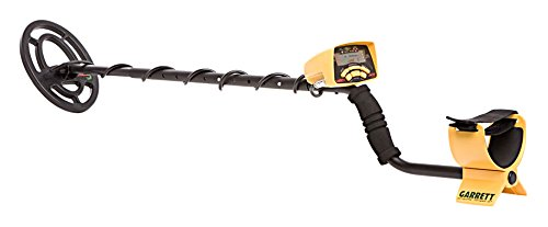 Photo of the Ace 250 Metal Detector